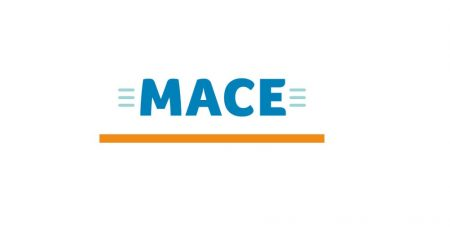 MACE Ireland - Part of the BWG Group